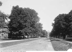 Although much wistful nostalgia is directed toward the formerly majestic and tree-lined Jarvis Street, the transformation of University Avenue over. Toronto, Tree Line, Photo Essay, Landscape Photos, Historical Photos, Ontario, Past, Cool Photos