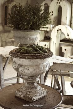 The Windy Lilac-Sharing All Things Home-French Country-French Country Decor and Decorating, DIY's Crafts and Outdoors-Old French Garden Urns French Country Rug, French Cottage, French Decor, French Country Decorating, French Style, Garden Urns, Garden Table, Country Style Homes, Fresco