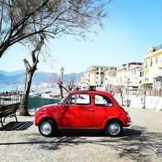 Amazing Fiat 500   Repost from @fiat500cinquecento #MadeinItaly #500 #fiat #fiat500 #cinquecento #cinquino #italy #italia #car #cars #beautycars #instacar #instacinquecento #insta500 #fiat500cinquecento #igers #igers500 #igerscar #retroautos #retrocars #500love #love500 #thehappycar @Regrann from @500forwedding