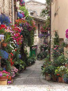 Ruas floridas Spello, Itália