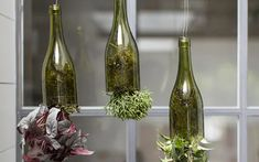 Indoor gardening: quirky ways to bring nature inside Not got much outdoor space? Never fear - become Small Backyard Ponds, Backyard Trees, Garden Painting, Garden Art, Garden Design, Plants In Bottles, Wine Bottles, Recycling Containers, Flower Window