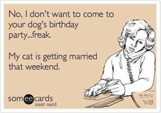 'No, I don't want to come to your dog's birthday party...freak. My cat is getting married that weekend.'