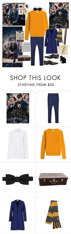 """Newt Scamander"" by fandom-girl365790 ❤ liked on Polyvore featuring Vivienne Westwood Man, Closed, Dsquared2, Hermès, Christies à Porter and Marsèll"