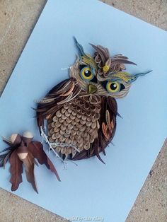 © Branka Miletic- Quilled owl pictures (Searched by Châu Khang)
