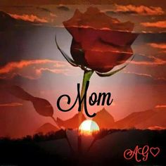 MOM ❤️❤️ what would I give to see you one last time..❤️❤️