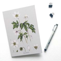 An A5 Notebook with an intricately drawn illustration of the Wood Anemone flower in colour by Catherine Lewis Design, perfect for your lists / planning and thoughts.  .  - A5  - 300gsm fully printed cover.  - 48 lined recycled pages.  .  P A C K A G I N G...  Each notebook is packaged with the upmost care, to ensure safe arrival.  The Catherine Lewis Design shop is based in Wales, UK so please allow up to 2 week for orders outside of Europe.  .  * D I S C L A I M E R...  Colours may vary...