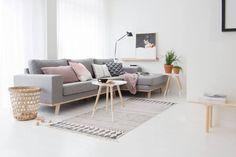 Scandinavisch interieur stijl grijs