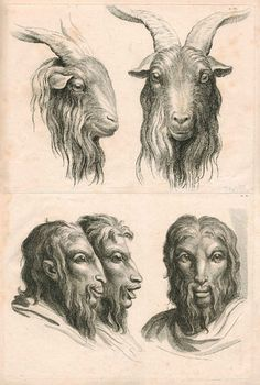 Lebrun's Physionomie, Plate 21: Human Figure and Goat