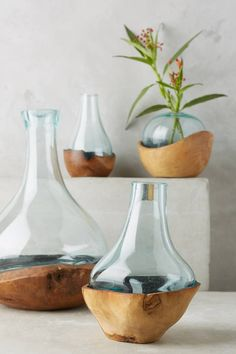 Anthropologie Teak & Bottle Vase