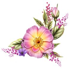 Art Floral, Floral Prints, Flower Images, Flower Art, Watercolor Flowers, Watercolor Paintings, Beautiful Flowers Wallpapers, Botanical Flowers, China Painting