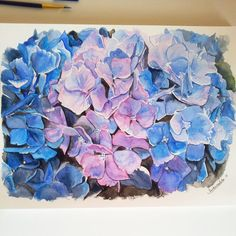 Pink and Blue Watercolor Hyndrangeas  original by SashaMalikArt, £150.00