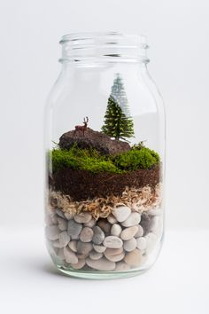 DIY Mason Jar Terrarium Art