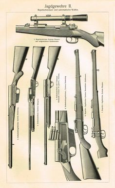 """Military Print - Meyers Lexicon's """"""""JAGDGEWEHRE - RIFLES"""""""" - Lithograph - 1913"""