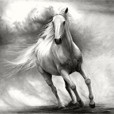 Running Horse - A drawing by Thubakabra
