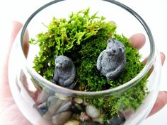Bear Pair Bowl Terrarium by DoodleBirdie on Etsy, $32.00