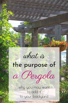 What is the purpose of a Pergola? Why may you want to add it to your backyard? Check out our post to find out! Gazebo Pergola, Backyard Pergola, Pergola Kits, Backyard Landscaping, Backyard Ideas For Small Yards, Pergola Attached To House, Ponds Backyard, Diy Garden Projects, Patio Design