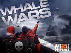 <3 Whale Wars!!