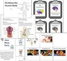 Human Body Lapbook download @ http://www.christianhomeschoolhub.spruz.com/teaching-methods---lapbooking-notebooking-etc.htm #homeschool #teach #edu