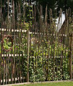 Sichtschutz - Ideen aus Stein, Geflecht, Holz und Stoff: Schutz aus Weidenstangen und Kletterpflanzen - [LIVING AT HOME]
