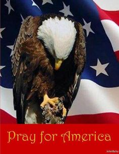 PRAY FOR AMERICA.....we've never need it as much as we NEED IT NOW!!!