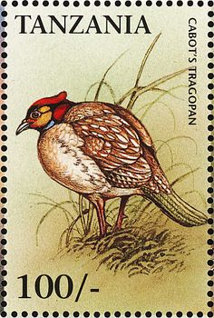 Cabot's Tragopan stamps - mainly images - gallery format