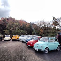 All together with Fiat 500