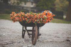 Orange Lilies in Rustic Wheelbarrow