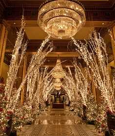 The Roosevelt Hotel in New Orleans, Louisiana has block-long lobby as a forested winter wonderland, with a canopy of white birch branches wrapped in sparkling lights that stretch overhead, numerous Christmas trees, poinsettias, and assorted holiday displays. A ginormous gingerbread village fashions small-scale depictions of famous  plantations out of gingerbread and candy.