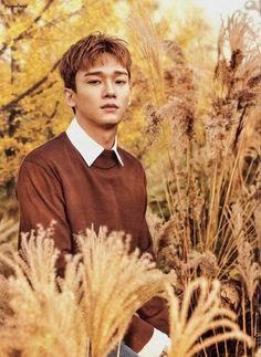 stfu is he even real Chanbaek, Exo Ot12, Daejeon, Chanyeol Baekhyun, Park Chanyeol, Exo Nature Republic, Kim Minseok, Xiuchen, Fandom
