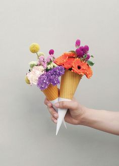 Flower Power /Quirky flower cones, a new way of giving a small cheap bouquet a beautiful twist. Deco Floral, Arte Floral, Ikebana, Floral Arrangements, Flower Arrangement, Planting Flowers, Beautiful Flowers, Beautiful Bouquets, Beautiful Things