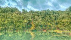 Season I Magic Forest, Vineyard, Seasons, Mountains, Nature, Photography, Travel, Outdoor, Shop