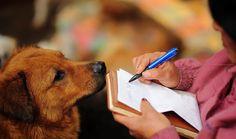 はるか2400km離れた地域から、ある中国人女性がやってきて、 自費で100頭もの犬たちを助けました。 女性は、65歳の元教師、楊暁雲Xiaoyun Yangさん。
