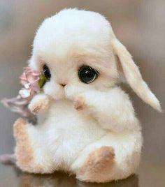 Que hermoso ❤❤ - Animales adorables Baby Animals Super Cute, Cute Baby Bunnies, Cute Baby Dogs, Cute Stuffed Animals, Cute Dogs And Puppies, Cute Little Animals, Cute Funny Animals, Cute Cats, Bunny Bunny