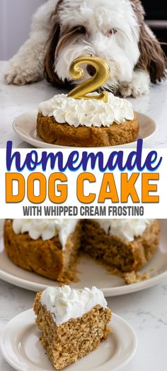 Celebrate your pup with a homemade dog cake for her birthday! This easy cake recipe is perfect for dogs with peanut butter and applesauce and whipped cream frosting. Your pup will love it! #recipe #easy #homemade #birthday #puppy