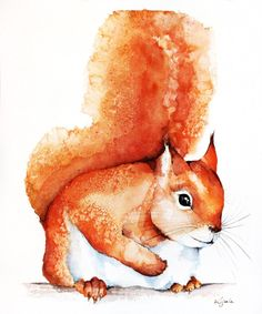 Original watercolors of red squirrel Paper 300g,  100% cotton size 23x29cm  Follow me on facebook: https://www.facebook.com/kijakwatercolors