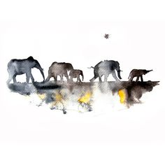 Elephants - Watercolor Painting - Art Print - Wall Art ($45) ❤ liked on Polyvore featuring home, home decor, wall art, water colour painting, watercolour painting, elephant wall art, matte painting and elephant painting