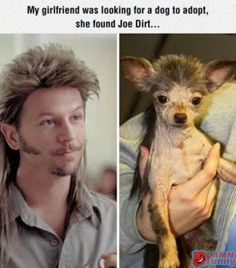 My Girlfriend Was Lokking For Dog T oAdopt,  And She Found Joe Dirt