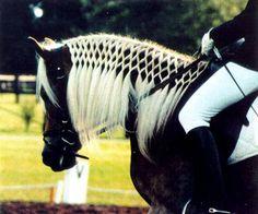 Lattice or Continental braid