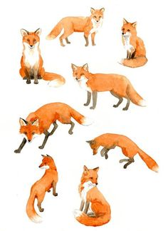 Watercolor illustrations of foxes. This gives great options for body position in a fox tattoo and is a beautiful work of art all on its own. Art And Illustration, Fuchs Illustration, Watercolor Illustration, Fox Drawing, Painting & Drawing, Watercolor Paintings, Tattoo Watercolor, Sketch Drawing, Fox Painting