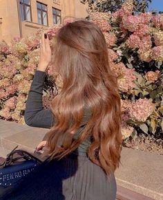 Honey Brown Hair, Brown Blonde Hair, Light Brown Hair, Warm Brown Hair, Light Caramel Hair, Copper Brown Hair, Chestnut Brown Hair, Blonde Honey, Hair Color Caramel