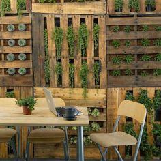 Un mur végétal esprit récup'