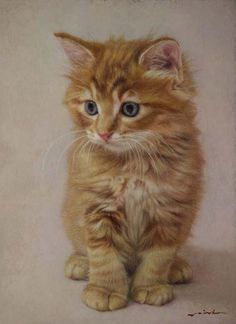 Por amor al arte: Seisho Nakagami - Katzen Animal Sketches, Animal Drawings, Cat Anatomy, Red Cat, Ginger Cats, Cat Drawing, Lynx, Beautiful Cats, Animal Paintings
