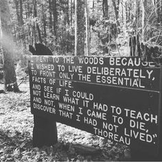 """🌲 Thoreau: """"I am grateful for what I am and have. My thanksgiving is perpetual…"""