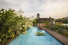 vegetación exuberante en piscina
