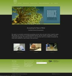 See the full website at www.brucecga.com