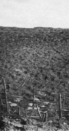 ©IWM (HU110852)-Detail; WWI, 1916, Verdun - Devastation on Les Eparges plateau. (part of a stereoscopic photograph)
