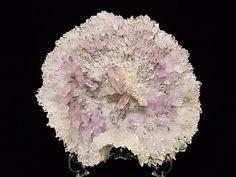 アメシスト(紫水晶) > フラワーアメシスト(特大サイズ)