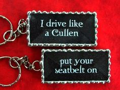 Put your seatbelt on....probably the funniest line in the movie!