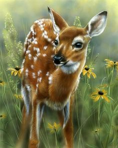 Beautiful Deer Art Animals Artwork Deer Art 35 Most Beautiful Oil Paintings From Top Artists Around The World 15 Beautiful Paintings That Combine Animals With Nature Bear Art Beautiful Animal…Read more of Beautiful Animal Paintings Wildlife Paintings, Wildlife Art, Animal Paintings, Animal Drawings, Oil Paintings, Pencil Drawings, Deer Pictures, Animal Pictures, Pictures To Draw