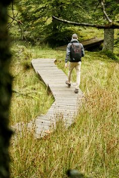Basque country: discovering the Iraty forest My Road Trip, Voyage Europe, Basque Country, Blog Voyage, France Travel, Surfing, Places To Visit, Hiking, Adventure